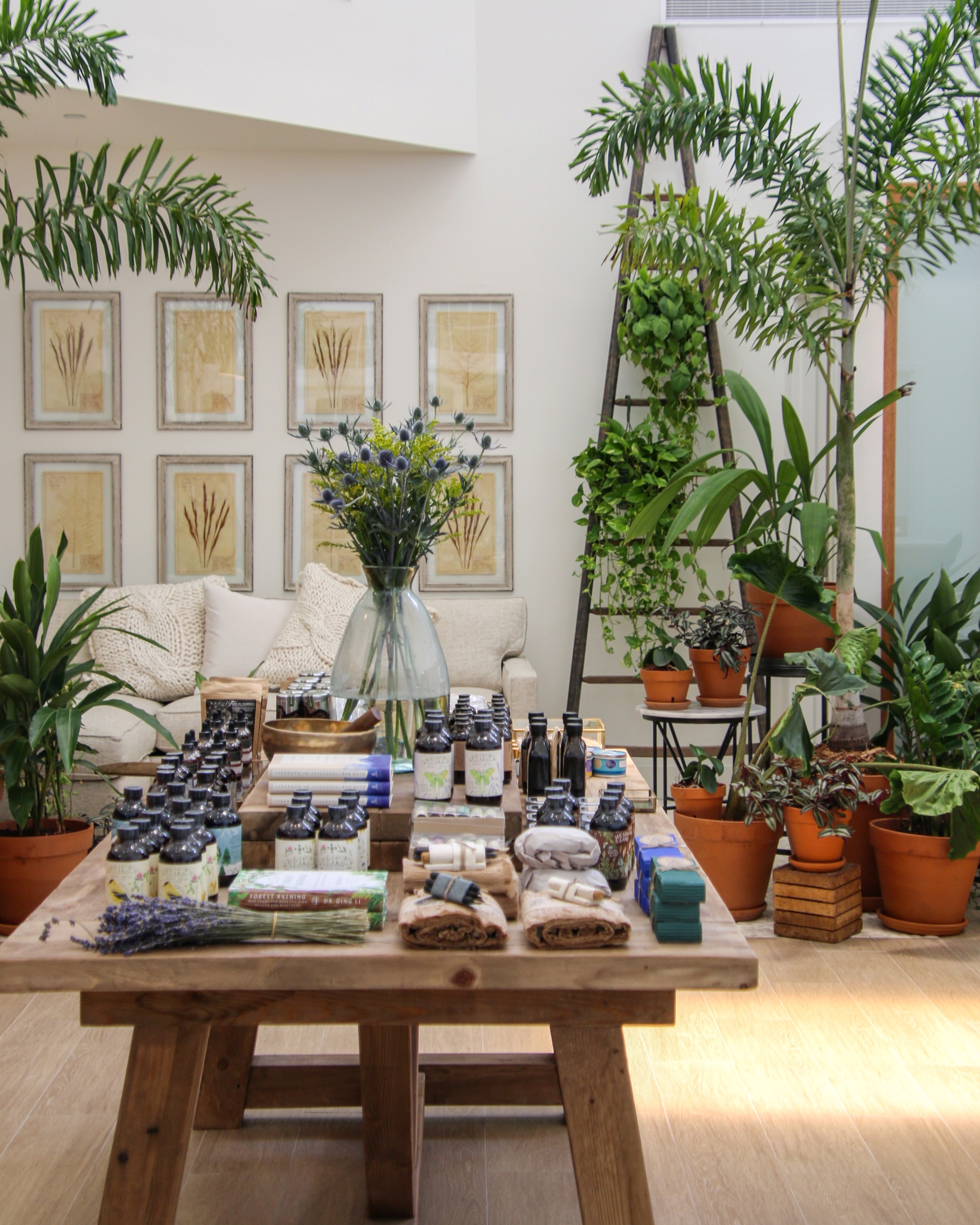 JOIN THE FEEL GOOD MOVEMENT AT BOTANIKA UNION – NOW OPEN!