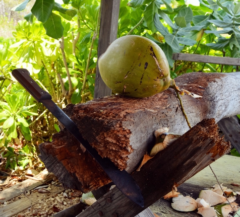 The Ultimate Summer Drink: Fresh Coconut Water