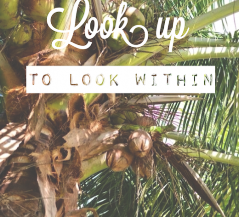 LOOK UP TO LOOK WITHIN